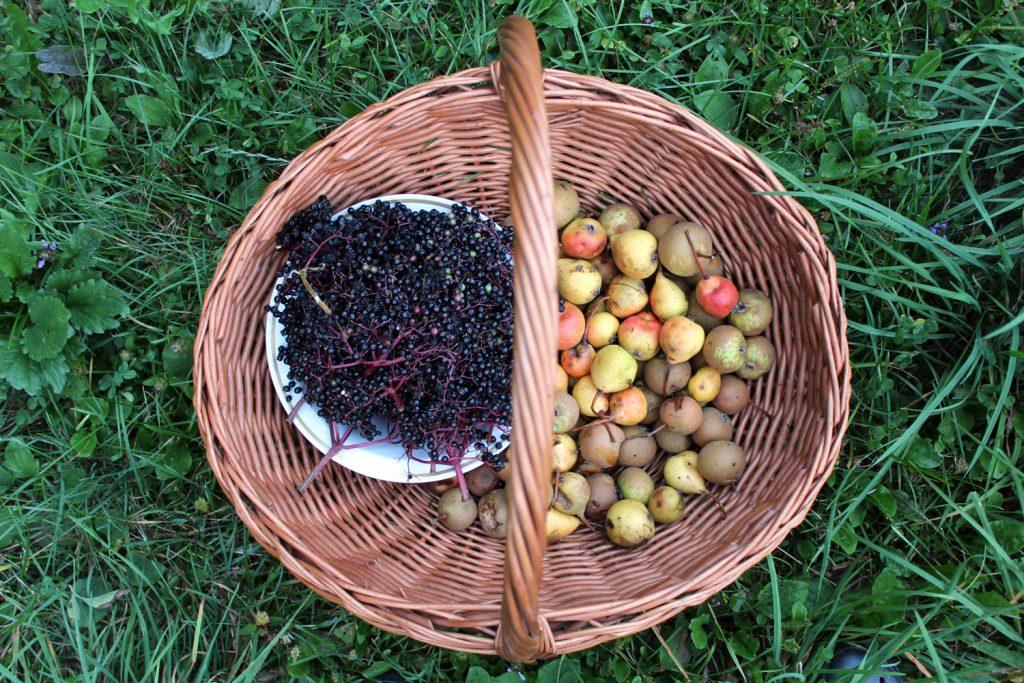 bezgove jagode hruške marmelada recept