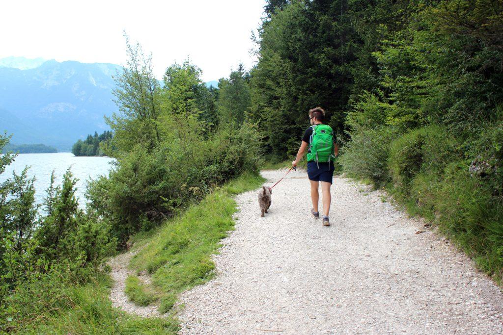 izlet v bohinj peš pot okrog jezera