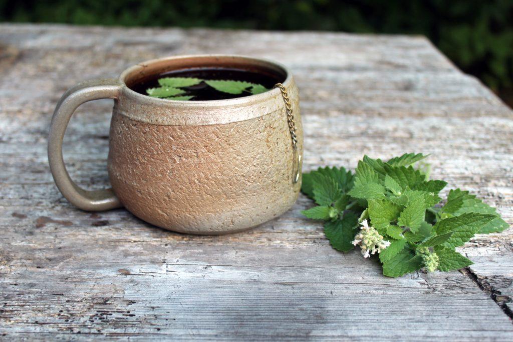 metin čaj citronska mačja meta zdravilni učinki uporaba